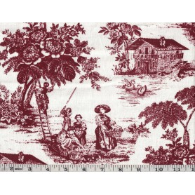 Canvas de Coton Imprimé 1093-24
