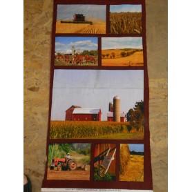 Quilt Cotton 6301-581
