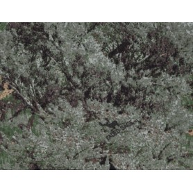 Tricot Camouflage 10004-2