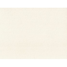 Organic Cotton Interlock 3044-01