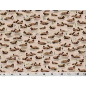 Quilt Cottons 8501-204