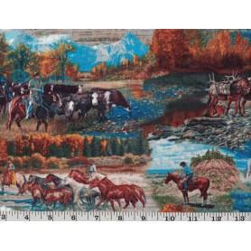 Quilt Cottons 8101-58