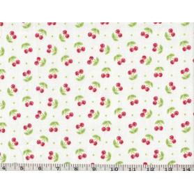 Quilt Cotton 6301-496