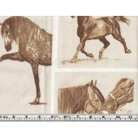 Printed Canvas BB 5202-13