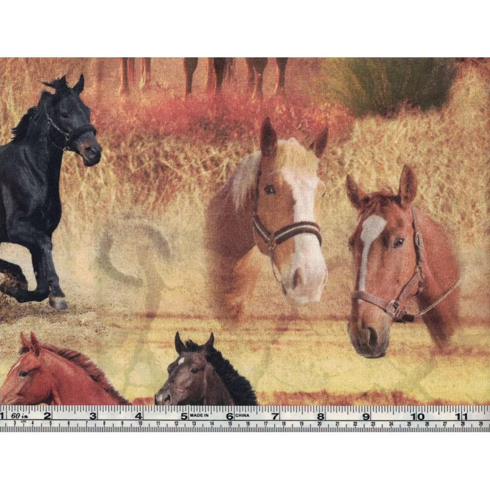 Printed Cotton Canvas BB 5201-17